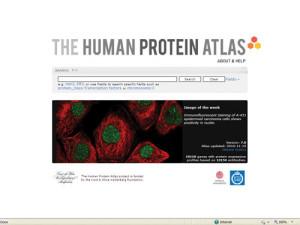 HumanProteinAtlas